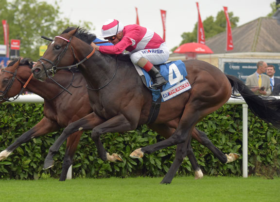 Racing post trophy betting e games basketball betting line